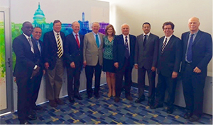 WFN/AAN leadership meeting 67th Annual AAN Congress, Washington, DC, 2015. From left to right, Gallo Diop, Ralph Sacco, Terence Cascino, William Carroll, Tim Pedley, Catherine Rydell, Raad Shakir, Riadh Gouider, Steve Lewis and Wolfgang Grisold.