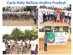 World Brain Day Celebration in India